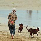 Go Fetch ... by Joe Mortelliti
