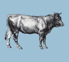 Vintage Old Cow Illustration by hiway9