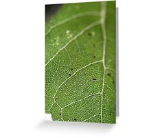 Green veins Greeting Card