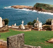 Gerringong Cemetary by Les Boucher