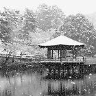 Winter Nara (UKIMIDO) , JAPAN by yoshiaki nagashima