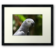 That Surprises Me ..! Framed Print