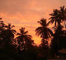 Sri Lankan Sunset by chobin