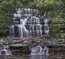 Liffey Falls - From the Liffey River by mspfoto
