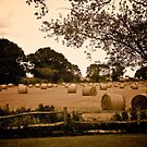 Hay at Bodiam Castle - Sepia by Lisa Hafey