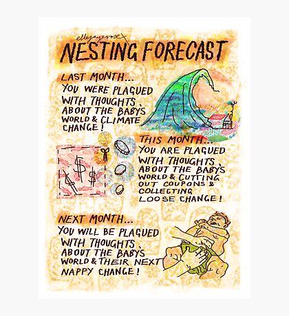 Pregnancy: Nesting Forecast Photographic Print