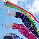 Koinobori come to Hobart by TonyCrehan