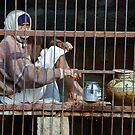 Water seller, Nawalgarh by Christopher Cullen