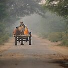 Husband and wife in camel drawn cart, Rajasthan by Christopher Cullen