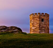 Watchtower - La Perouse by Mathew Courtney