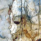 Portrait in the Rock by Kathie Nichols