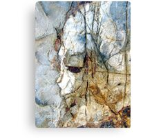 Portrait in the Rock Canvas Print