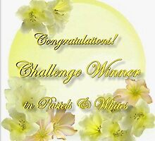 PW WINNER Banner Challenge by plunder