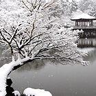 Winter Nara (UKIMIDO−2) , JAPAN by yoshiaki nagashima