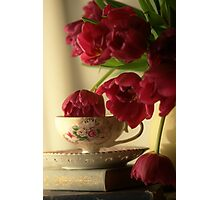 Graceful Tulips stopping by for a sip of Tea Photographic Print