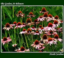 The Gardens At Biltmore ~ Part Six by artisandelimage
