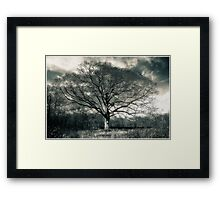 The Old One Framed Print