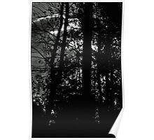Dark Side of The Lens Poster