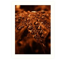 Copper Droplets Art Print