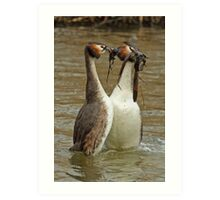 Penguin Dance 2 Art Print