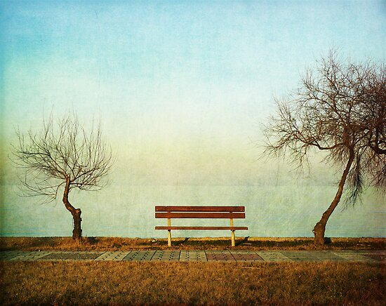 the bench by Daphne Kotsiani