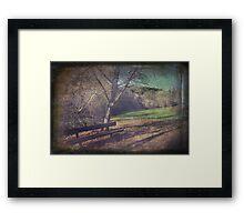 The Winter's Sun Framed Print
