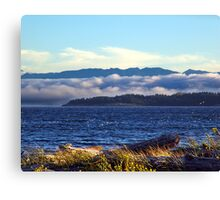 Winter's Coming (2) Canvas Print