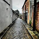Alleyway  by Roxy J