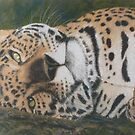 Jaguar by BarbaraBird