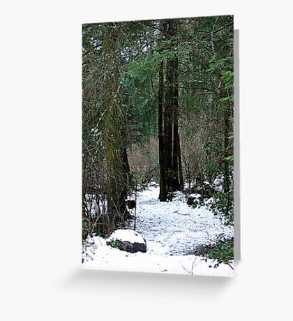 Woodland Dawn Greeting Card