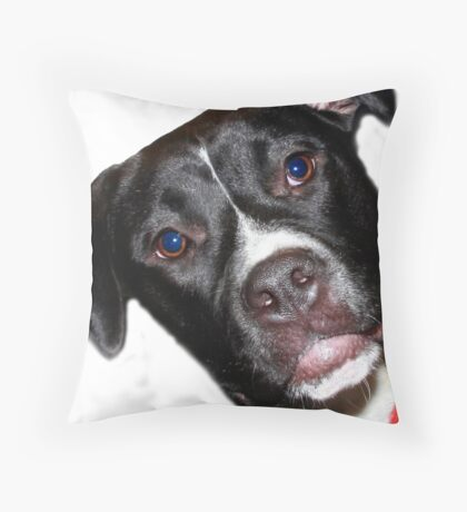 A Sweet Pit Bull Throw Pillow