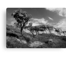 Sandstone Cliffs, Golden Gate, South Africa Canvas Print