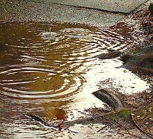 Puddle Drip by HillbillyReggae