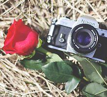 true love by Heather Chipps