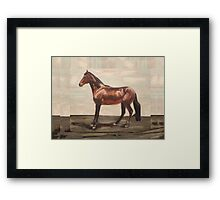 Happy Camper (oil painting horse portrait) Framed Print