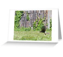 Fence-line Cruiser Greeting Card