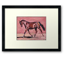 Walking with Purpose (oil painting horse portrait) Framed Print