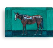 Night Watching  (oil painting horse portrait) Canvas Print