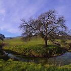 "Mini Me ""Tree"" by Richard  Leon"