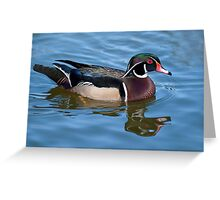 Mr. Wood Duck Greeting Card