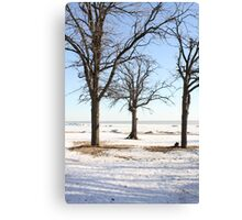 Three Trees In Winter Canvas Print