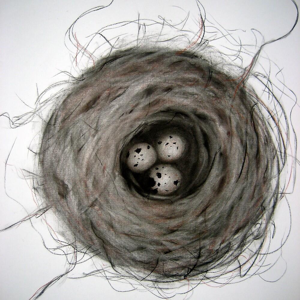 nest by Sally McColl