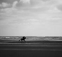 Horse Rider by Paul McSherry