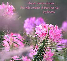 Focused on Beauty by Geno Rugh