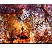 striate cortex Photographic Print