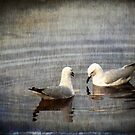 Seagulls by pennyswork