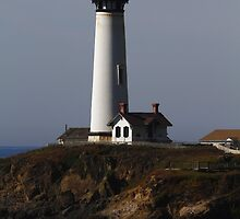 Pigeon Point Lighthouse by fototaker