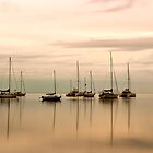 Resting - Eastern Beach Geelong Victoria by Graeme Buckland