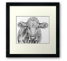 Cow Sketch Framed Print