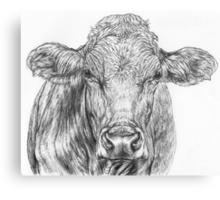 Cow Sketch Canvas Print